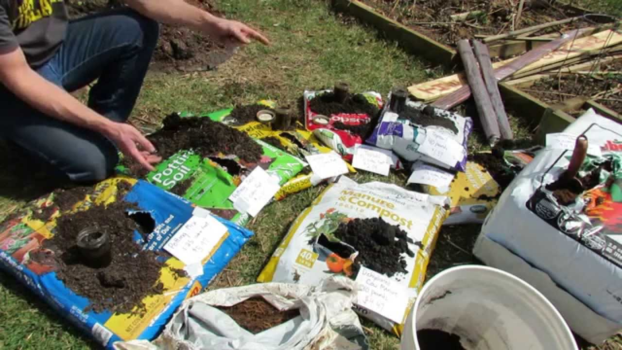 Basics On Buying Container Mixes: Potting Mix, Potting Soil, Garden Soil, Top  Soils And Peat Moss   YouTube