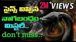 Nagabandam   Kerala Ananthapadmanabha swamy temple Treasure Nagabandam Mystery Revealed aadhitv