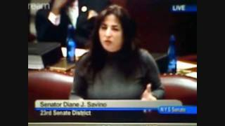New York Gay Marriage: Diane Savino's excellent testimony, but bill is defeated 38-24