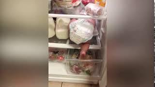 baby fails - Baby in the fridge
