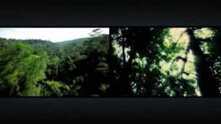 «Киевстар» заботится об окружающей среде(, 2009-10-14T17:03:55.000Z)