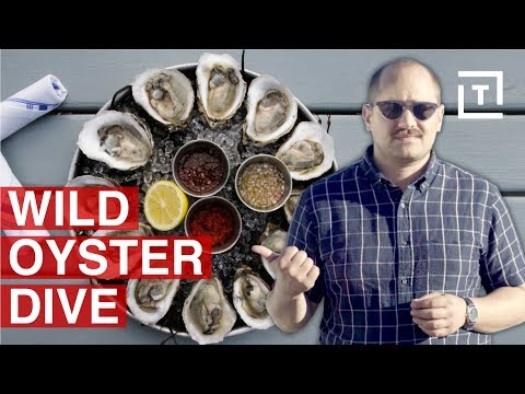 Long Island Has NY's Freshest Oysters || Food/Groups