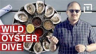 Long Island Has NY's Freshest Oysters    Food/Groups Shuckin' Around