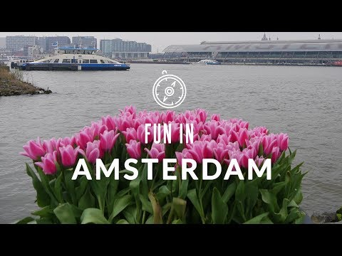 Fun in Amsterdam - Discover the capital of the Netherlands