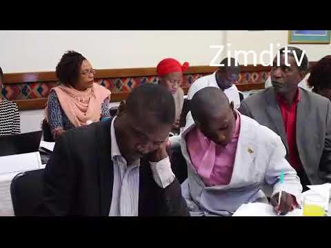 No Zim elections in 2018 says Ibbo Mandaza