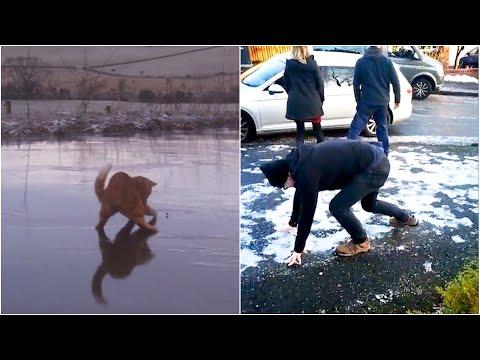 Кога зимата го возвраќа ударот - Најсмешните паѓања на мраз