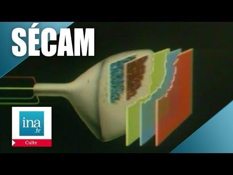 Le Sécam, comment ça marche ? | Archive INA