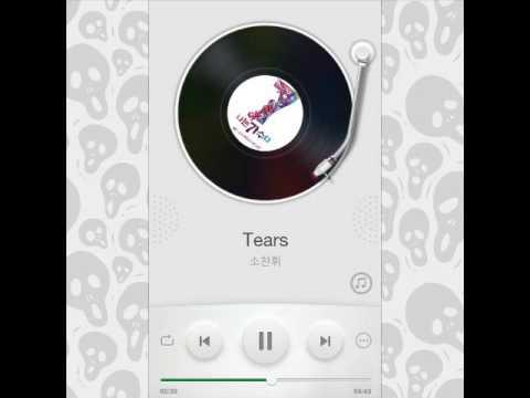 So Chan Whee  - Tears.mp3