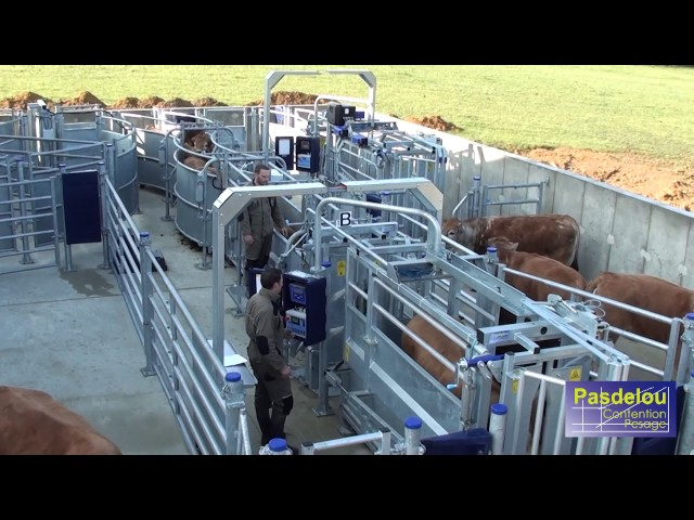 PASDELOU - TESTING AND TRAINING CENTRE – FIXED HANDLING SYSTEM FOR CATTLE