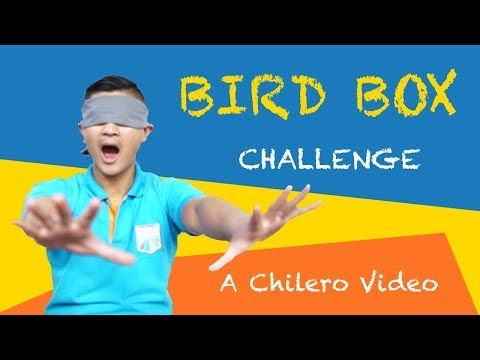 Bird Box Challenge | Spanish Academy TV