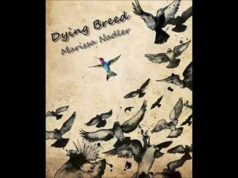 Dying Breed - Marissa Nadler (lyrics)