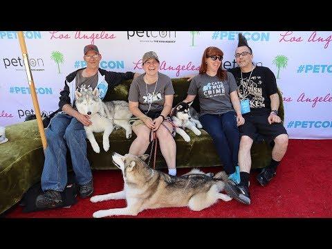 Huskies Made it to Petcon Los Angeles | Travel Vlog
