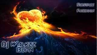 Alan Walker - Burn