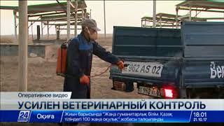МСХ РК ввело запрет на ввоз товаров четырех предприятий Кыргызстана(, 2017-10-21T12:54:59.000Z)