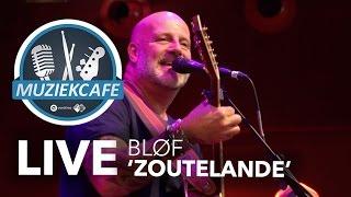 bløf zoutelande live bij muziekcafé