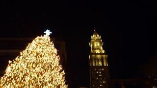 Boston - Holiday Tree: Quincy Market