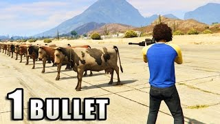 GTA V - How many Animals can survive 1 Bullet?