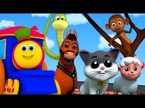 Bob suoni animali canzone | Animal Sound Song | Bob The Train Italiano | Filastrocche per bambini