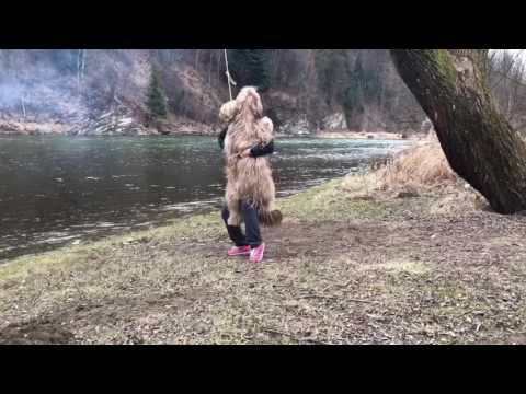 Luśka na huśtawce - Briard on a swing
