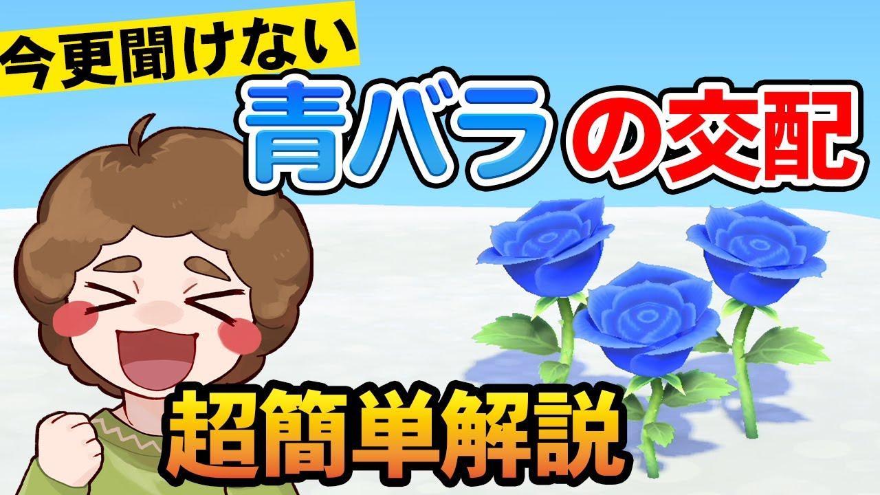 バラ 青 作り方 森 あつ 【あつ森】青いバラの作り方と咲かない時の対処法