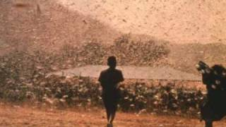 Scott Walker - Darkness (Plague of Locusts)