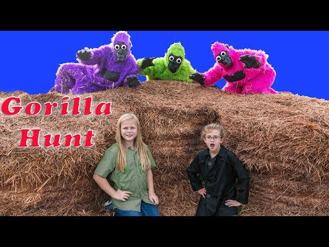 Assistant Must Find the Puppy Dog Pals Hidden by the Gorillas in the Corn Maze