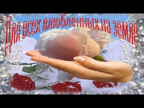 С Днем влюбленных. Видео поздравления в подарок - Смешные видео приколы