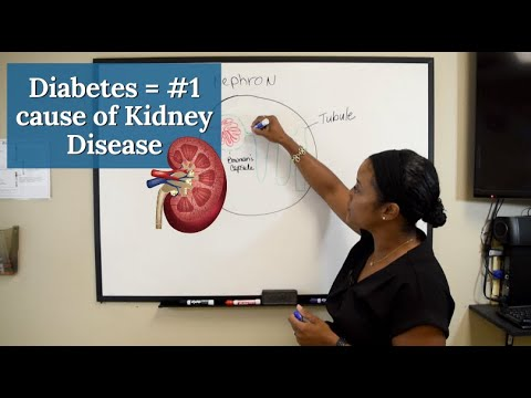 Diabetes Is The Number 1 Cause Of Chronic Kidney Disease [Diabetic Kidney Disease] - CKD Series #2