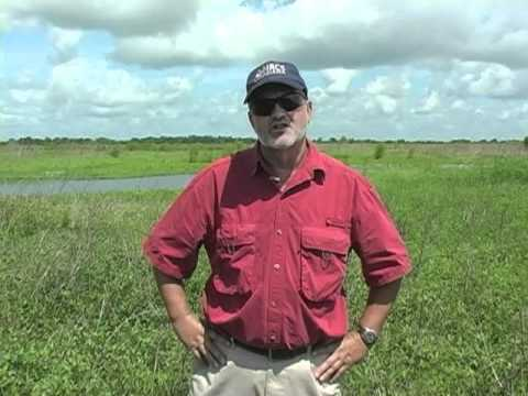 USDA NRCS Wetlands Reserve Program - Louisiana