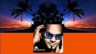 Roger Shah & Sian Kosheen - Hide U (Radio Edit) [MAGIC057.3]