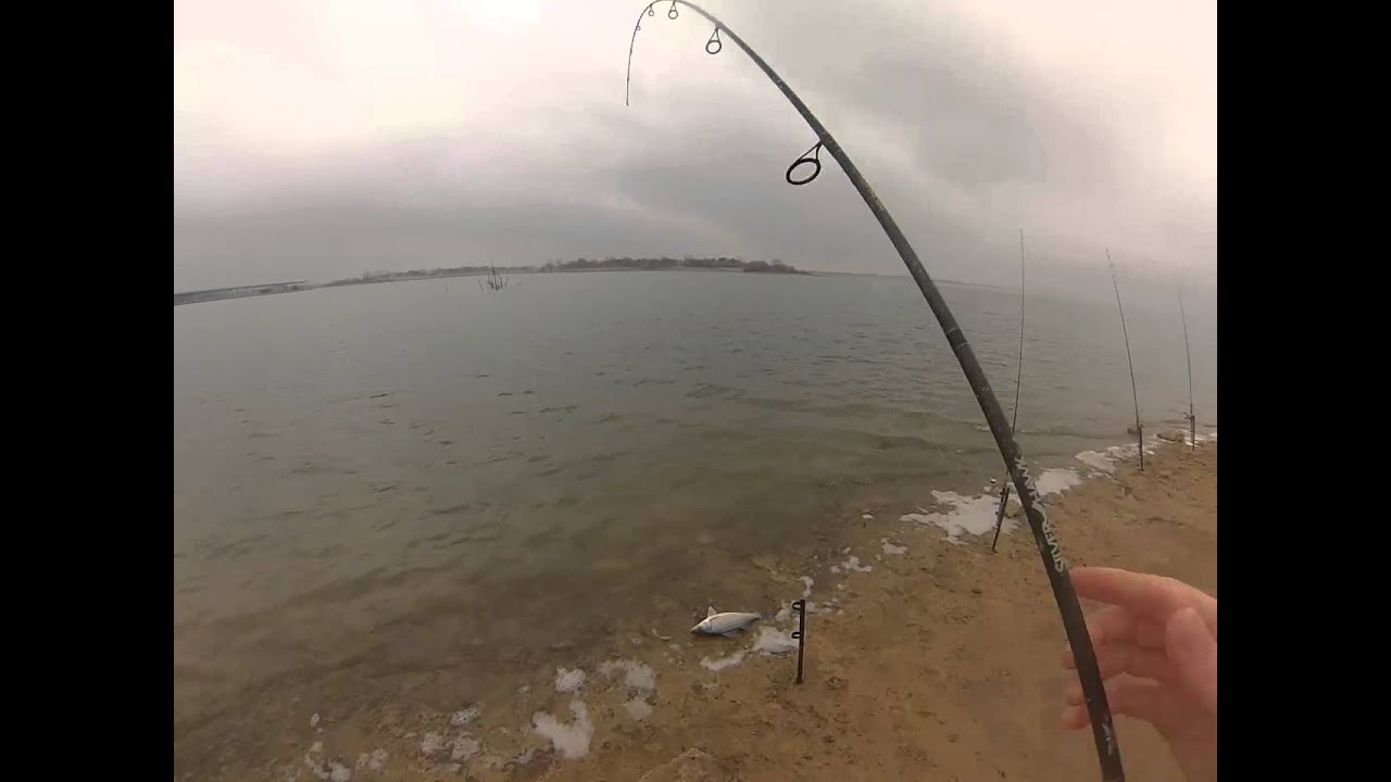 Lake lewisville hybrid striper bankfishing youtube for Lake lewisville fishing