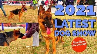Dog Show In India | German Shepherd Speciality,Dog Show | German Shepherd Breed | Part 2 | Scoobers