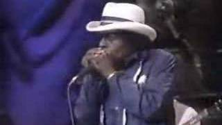 Junior Wells - Trouble no more- Lonesome Pine 1987