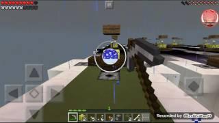 Minecraft video ft. Blaze the cat fan