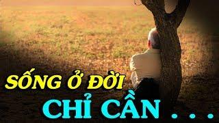 ✅Mọi việc trong đời đâu thể theo tâm mình, chỉ cần không thẹn với lương tâm - Thiền Đạo