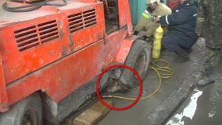МОЛОДЦЫ! Харьковские спасатели спасают собаку,застрявшую под электрокаром!