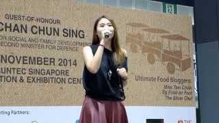 [FANCAM] 141122 Ultimate Hawker Fest 2014 - 林思彤 Lin Si Tong - 我们不都是这样