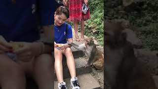 funny baby,funny baby video,funniest baby and animals,funny fails baby,fun and fails baby 2019