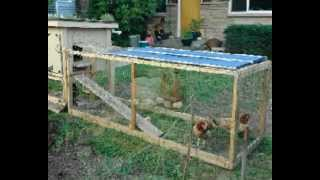 Chicken Coop Plans PDF | Download Designs On How To Build A Chicken Coop Plans PDF Cheap & Easy