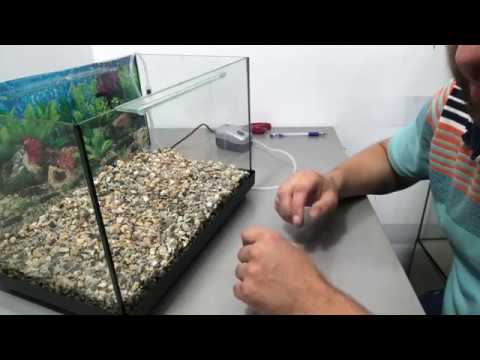 Запуск аквариума видеоурок
