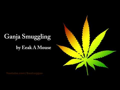 Ganja Smuggling  Eeak A Mouse Lyrics