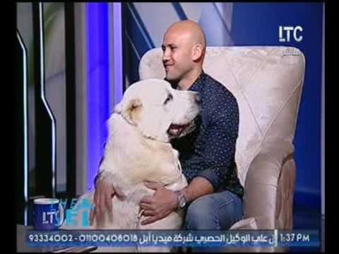 برنامج The Vet|ولقاء مع مدرب الكلاب أحمد حسيب وحوار ساخن عن مشاكل الكلاب 10- 3- 2017