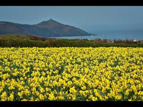Yellow | Wikipedia audio article