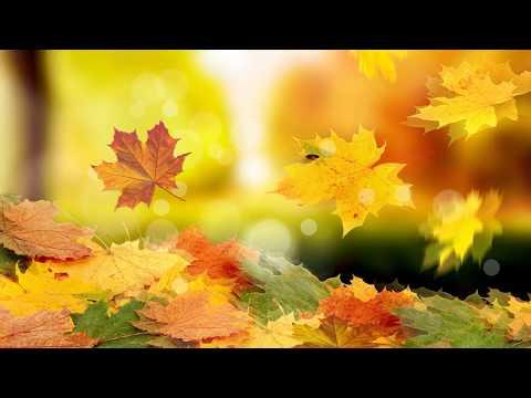 Осень футаж фон