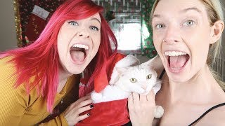 TESTING ADORABLE CAT COSTUMES!!!
