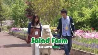 Salad Farm cm.
