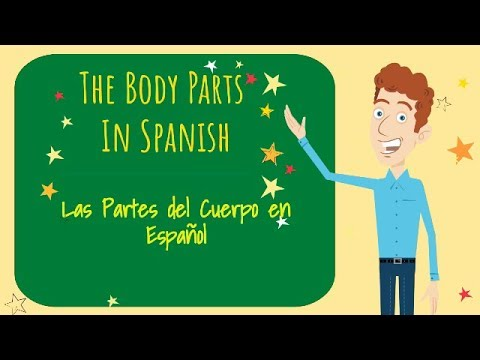 Learn The Body Parts In Spanish: El Cuerpo (The Body)