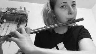 You Say - Lauren Daigle | [Flute Cover]
