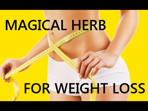 How to lose weight in 14 days naturally Fucoxanthin