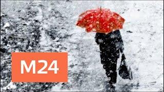 Синоптики пообещали ухудшение погоды в Москве во второй половине дня - Москва 24